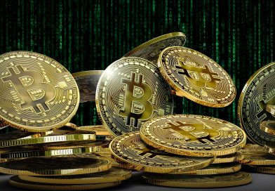 La TOP 10 dei maggiori possessori di Bitcoin