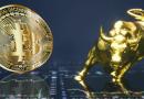 Che cos'è una bull run di Bitcoin