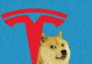 Volete che Tesla accetti Doge?